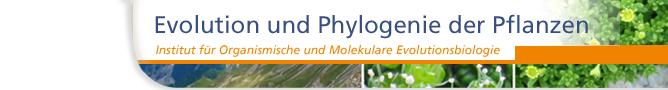 Evolution und Phylogenie der Pflanzen